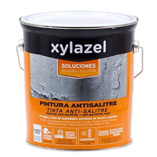 Xylazel - Pintura antihumedad antisalitre 4l
