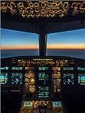 Poster 30 x 40 cm: A320 Cockpit Dämmerung von Ulrich