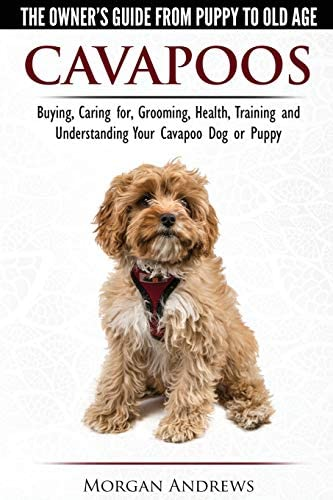 Cavapoos The Owner s Guide From Puppy To Old Age Buying Caring for Grooming Health Training product image
