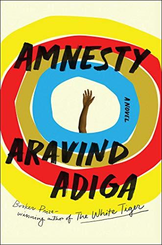 Image of Amnesty: A Novel