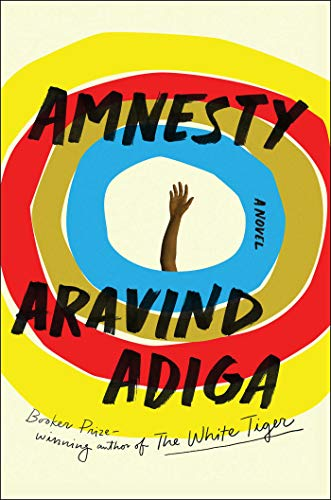 Image of Amnesty: A Novel