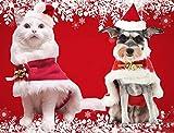 Leowow Pet Dog Christmas Costume Dog Santa Hat -L