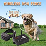 Wireless Dog Fence Electric Pet Containment System, Safe and Easy to Install Vibrate/Shock Dog Fence, Adjustable Control Range 900 Feet, Rechargeable Waterproof Collar (1 Collar Kit +14 Flags)