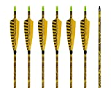 ARCHERY SHARLY [6 Pack] 31Inch Carbon Arrow Practice Hunting Arrows with 5' Camo Natural Feathers for Traditional Recurve Bow and Longbow