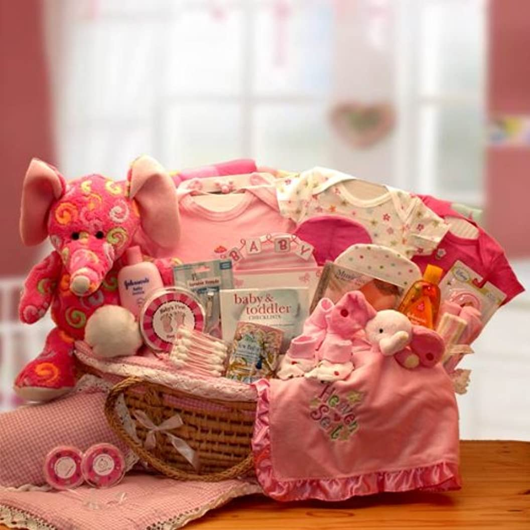 Sweet Baby Girl Gift Basket in Moses Carrier -Pink Deluxe XL bospvdipwih65