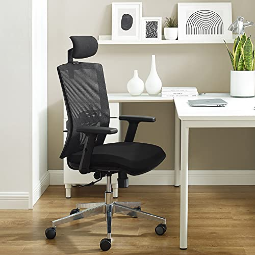 WORKSMYTH Breathable Mesh Back Ergonomic Office Chair, High Back Computer Desk Chair with Adjustable Headrest Lumbar Support and Armrests, Aluminum Base