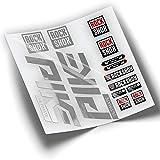 Pegatinas Horquilla ROCKSHOX Pike 2020 WP295 Cromado Espejo