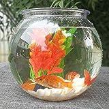 XKMY Tanque de peces acuario Goldfish tazón escritorio plástico transparente acuario redondo tanque de tortuga acrílico peces verde maceta (color: blanco, tamaño: 2,8 litros)