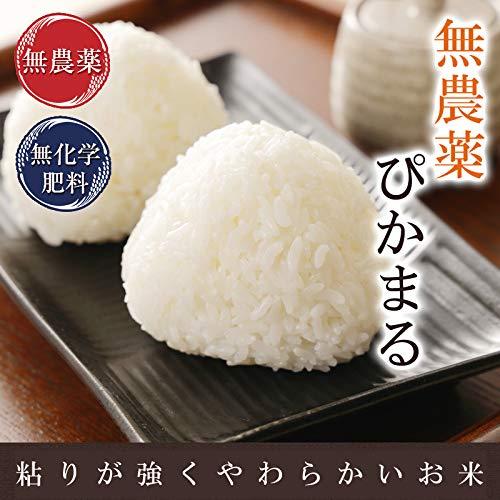 無農薬 無化学肥料 ぴかまる 低アミロース米 5kg (玄米)