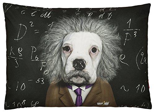 Pets Rock ™ Cerveau Luxe Chien lit