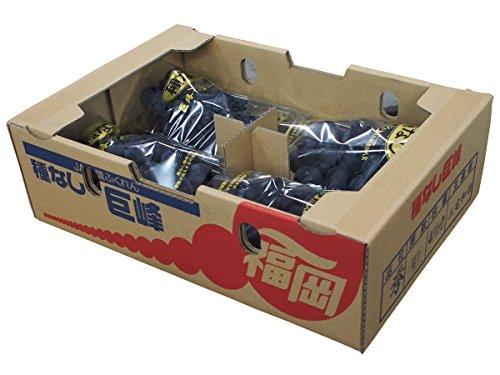 福岡県産 種なし巨峰 秀品・1箱(4パック入り)