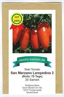 Tomate - rote Flaschentomate - San Marzano Lampadina 2 - alte Sorte - 30 Samen
