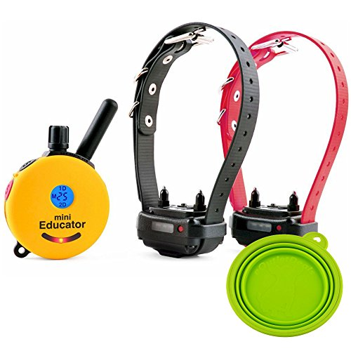 Best Dog Training e Collar - Educator Remote Trainer System - Waterproof - Vibration Tapping Sensation with eOutletDeals Value Bundle (1/2 Mile 2 Dog w/Free eOutletDeals Pet Bowl)