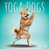 Yoga Dogs 2020 Square Wall Calendar (English, French and Spanish Edition)