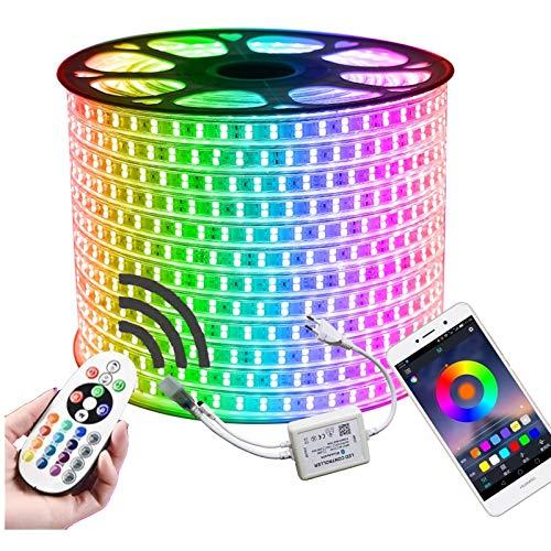 SUERBE 1-12M Tira de LED RGB de Doble Fila 96LEDs / M 5050 220V Cinta de luz de Cambio de Color IP67 Luz de Cuerda LED Impermeable + Control de Bluetooth IR