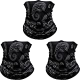3 Pack American Flag Face Mask Seamless Outdoor Microfiber Motorcycle Face Mask Outdoor Mask for Sport Headwear Hiking Cycling Ski Snowboard (Paisley)