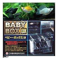 (熱帯魚)ミックスバルーンモーリー(4匹) + ベビーボックス・プラス セット 本州四国限定