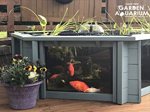 Clear View Garden Aquarium Aquarium de Jardin avec parois Transparentes Lily - Seagrass Green
