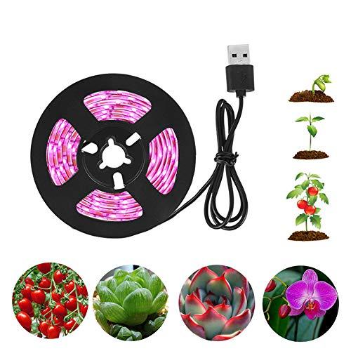 POOPFIY LED Grow Light USB LED Strip fitolampy 1m 2m 3m 4m 5m Phyto Lampe Für Spectrum Pflanzenbeleuchtung Pflanzen Blumen Sämling Anbau,5m