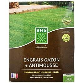 BHS EGA100 Engrais Anti 4 kg | Soit 100 m² | Utilisable en Agriculture biologiqueElimine Rapidement Les Mousses du Gazon…
