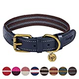 Blueberry Pet 8 Colors Polyester Fabric Webbing and Soft Genuine Leather Dog Collar in Noir Grey and Burgundy, Medium, Neck 15'-18', Adjustable Collars for Dogs