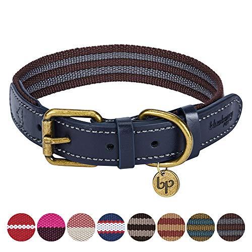 Blueberry Pet Klassisches Gestreiftes Basis Echtleder Hundehalsband in Noir-Grau und Bordeaux-Rot, M, Hals 38cm-46cm