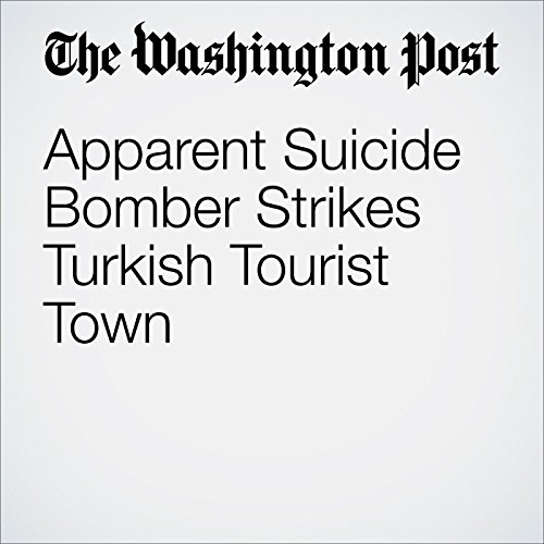 Apparent Suicide Bomber Strikes Turkish Tourist Town audiobook cover art