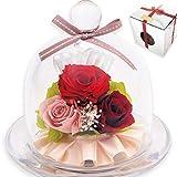[liLYS épice] リリスエピス プリザーブドフラワー バラ ガラスドーム 誕生日 母の日 プレゼント (ルージュレッド)