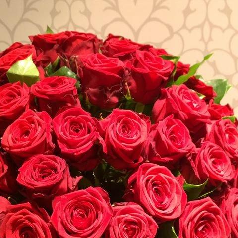 VERSANDKOSTENFREI 20 Rote Rosen mit XXL-Blütenköpfen Gratis-Grußkarte