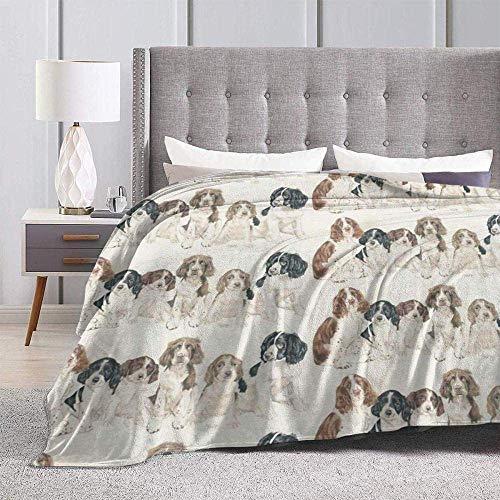 N \ A morbida coperta Sly Cooper Thieves in Time biancheria da letto in microfibra leggera divano caldo tappetino yoga super morbido coperta dimensioni 50 x 127 cm 152,4 cm x 127 cm
