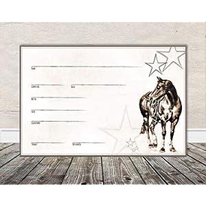 Boxenschild Stallschild Stalltafel Namensschild Pferd 'Western, Quarter Horse' 20x30cm