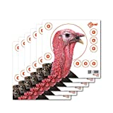 EZ Aim Paper Shooting Target Turkey Target by Allen, 12 inch x 12 inch, 6 Pack, Multicolor, One Size (15322)