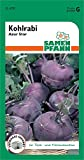 Kohlrabi Azur Star Gemüsesamen Gemüsesaat lila violett Freiland