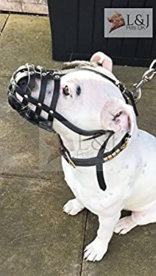 pets Light Real leather Dog Muzzle for Staffordshire Bull Terrier Staffy, Staffie by Dogs