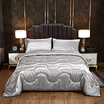 SUCSES Silky Satin Comforter Set Queen Size Silk Like Bedding Comforter Set Super Soft Sexy Quilt Set Lightweight Luxury Bed Set with Pillowcases Silver 90 x 90 Inch