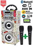 DYNASONIC - Altavoz Bluetooth con Karaoke y Micrófono (Modelo 2) | Radio FM, lectores USB y SD, Batería Recargable (TWS 2 micros)