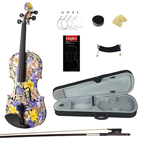 Best Violin Kit With Cases