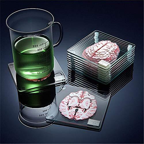 Nologo GSZPXF Brain Specimen Coasters Set 3D Organ Brain Artwork Brain Slices Square Acrylic Glass Drinks Table Coaster Drunk Scientists Gift