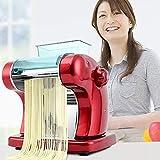 HUIJ Máquina de Pasta eléctrica 220v,máquinas de Pasta,máquina de fabricación de Pasta Fresca de Acero Inoxidable Rodillo de Masa para Espagueti y lasaña Tagliatelle Fettuccine.