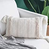Dremisland Lumbar Small Decorative Throw Pillow Covers for Couch Bedroom Sofa Embroidery Pillow