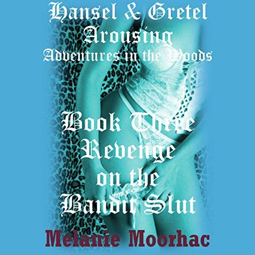 Revenge on the Bandit Slut audiobook cover art