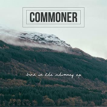 Bird in the Chimney EP