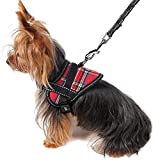 Alfie Pet - Justice Harness Vest and Leash Set - Color: Red, Size: Medium