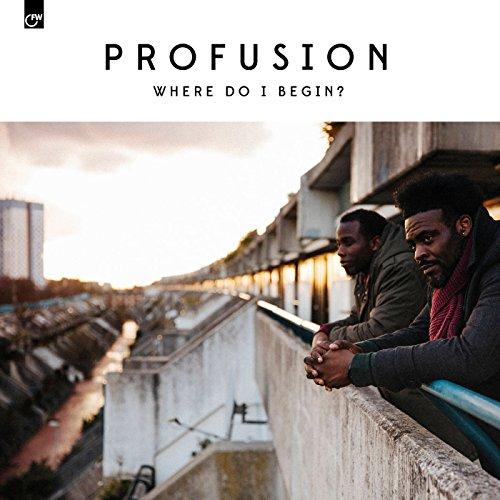 Where Do I Begin [Vinyl LP]