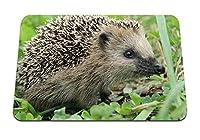 26cmx21cm マウスパッド (ハリネズミの草の銃口のスパイク) パターンカスタムの マウスパッド