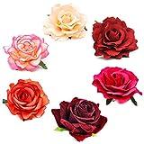 Coucoland Broche con diseño de rosas para el pelo, para novia, boda, accesorio para el pelo, para mujer, carnaval o disfraz. 6 unidades – serie roja. Talla única