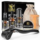 ARESKEY Beard Growth Kit, Beard Grooming Kit with Derma Roller, Natural Beard Growth Serum, Beard Wash, Beard Balm, Roller Cleanser, Beard Comb, Storage Bag, Organic & Natural Beard Gifts Set for Men
