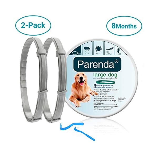 Dog Flea and Tick Collar,Flea and Tick Treatment and Prevention for Dogs up to 8 Month,One Size Fits All,100% Natural Ingredients, Waterproof,Include Tick Removal Tools(2 Pack)