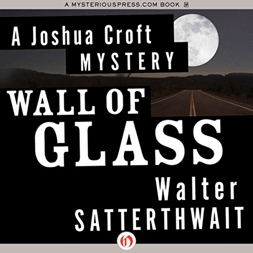Wall of Glass audiobook cover art