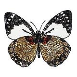 Fangfeen Traje Apliques Vestido de suéter con Lentejuelas Mariposa Ropa Parches Brillante Brillante Mariposa Apliques Decorativos Accesorios